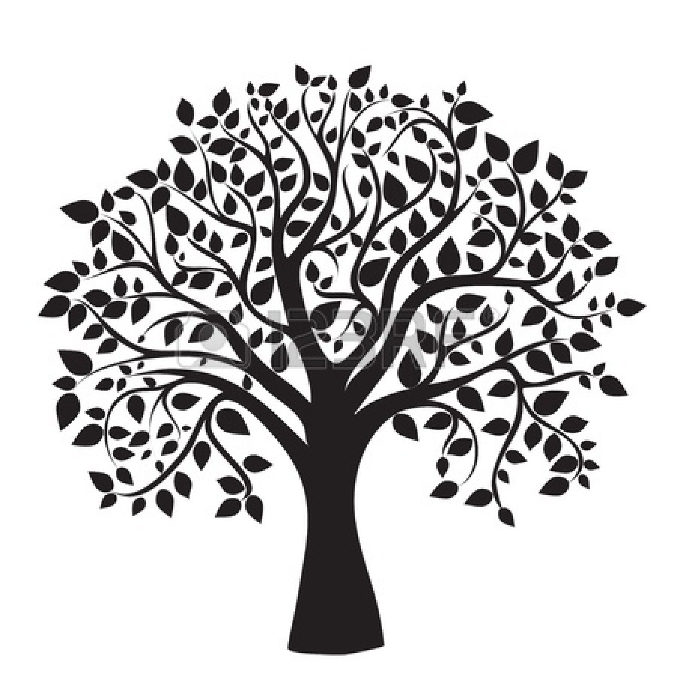 Clipart Family Tree Free Clipground