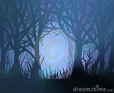 Dark forest clipart.