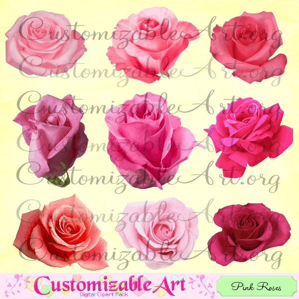 Hot pink rose clipart.