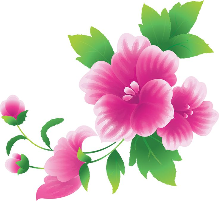 Pink flowers clipart - Clipground