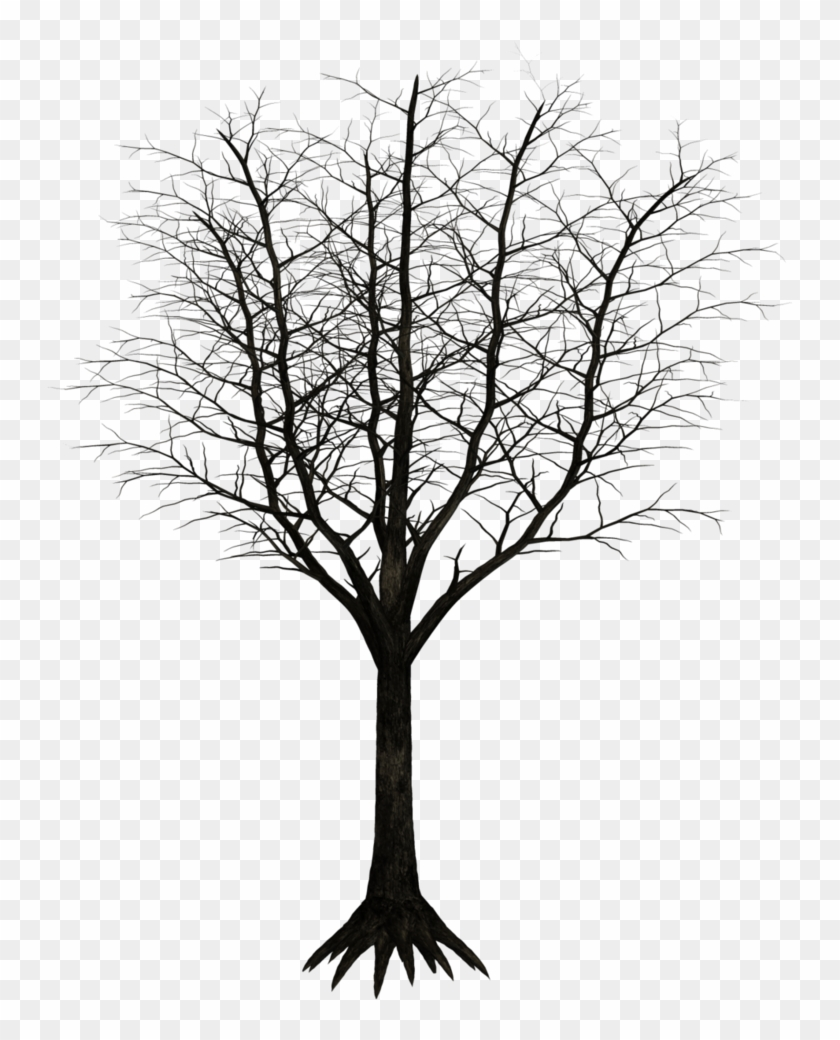 Free Download Monochrome Photography Clipart Twig Black.