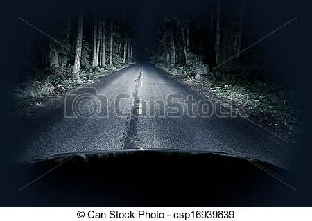 Stock Photos of Night Driving Thru Forest.