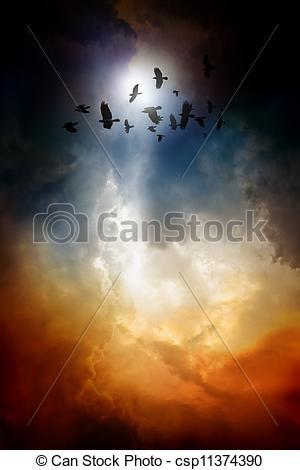 Stock Photographs of Ravens in dark sky.
