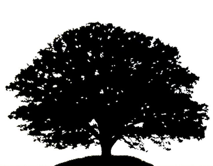 Dark oak tree clipart.