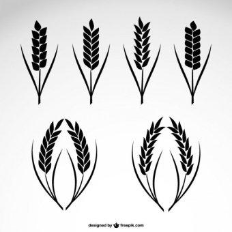 10+ Wheat Clipart Images Vectors.