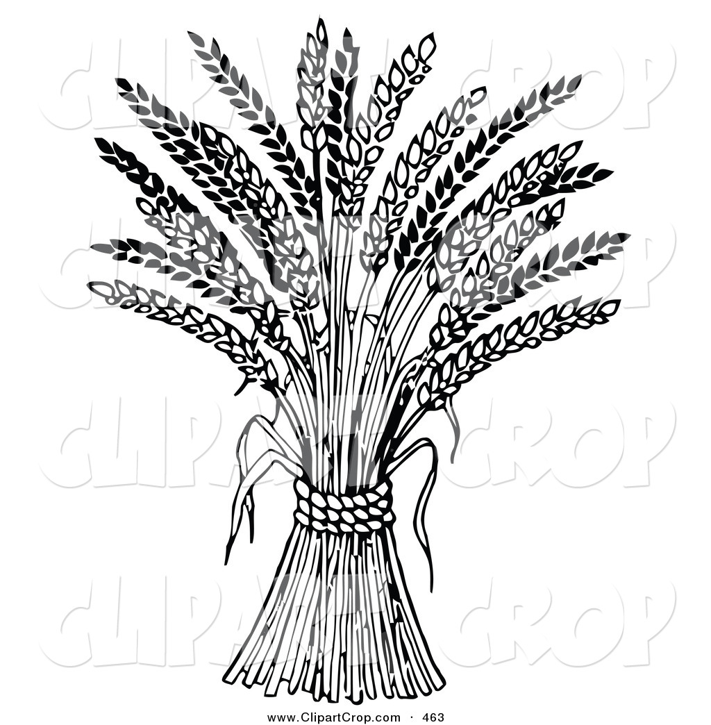 Harvest clipart black and white.