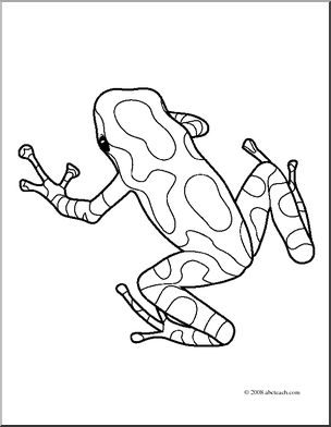 Clip Art: Frogs: Pasco Poison Dart Frog (coloring page).