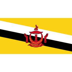 flag of Brunei Darussalam clipart, cliparts of flag of Brunei.