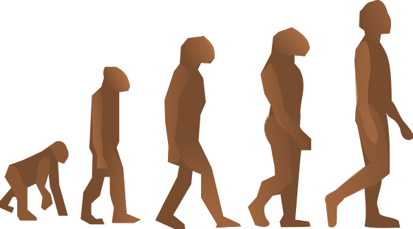 Darwin evolution theory Vector.
