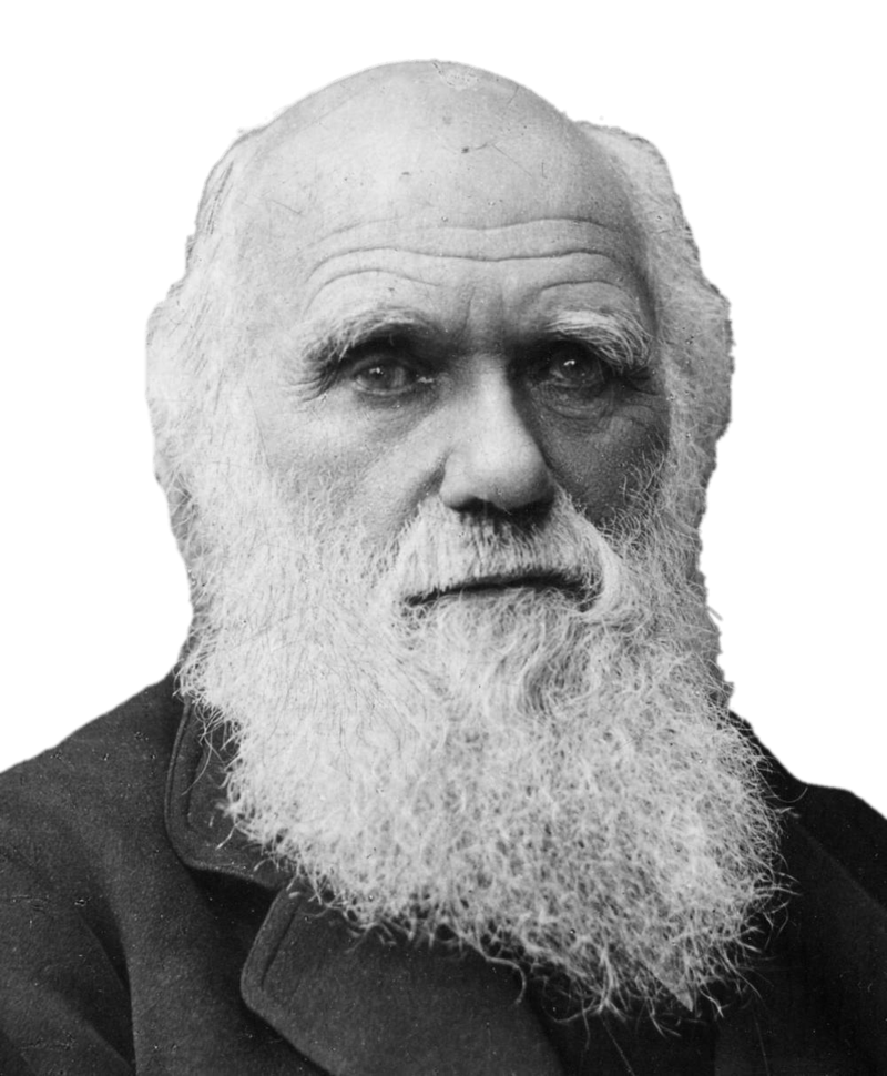 Download Free png charles darwin portrait.