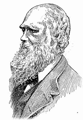 Charles Darwin lineart.
