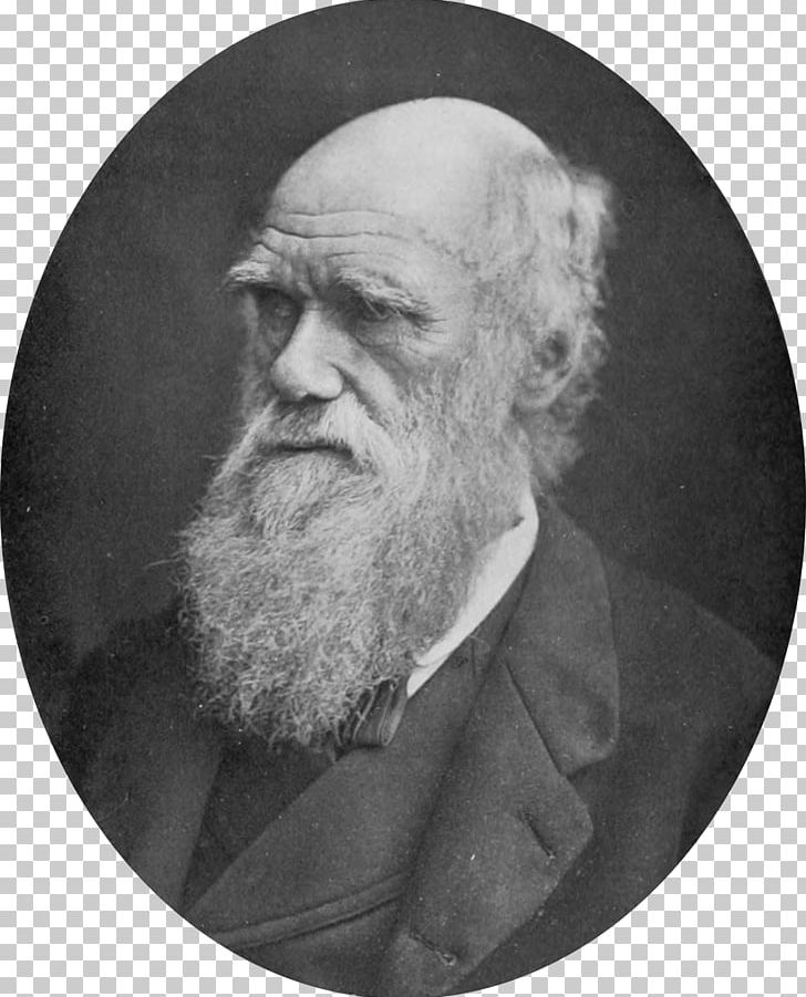 Charles Darwin On The Origin Of Species The Voyage Of The Beagle.