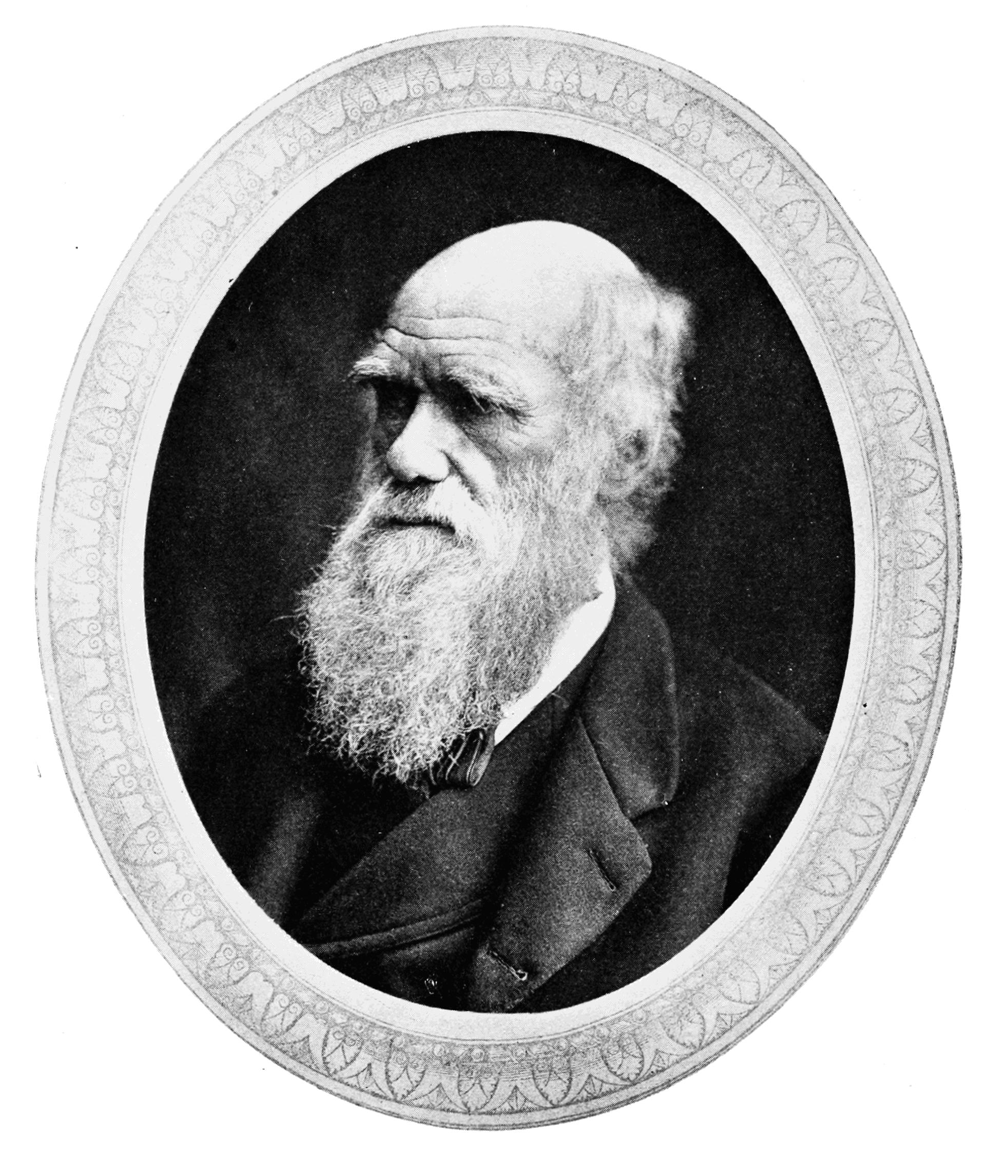 File:PSM V74 D318 Charles Darwin.png.