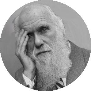 Darwin.png.