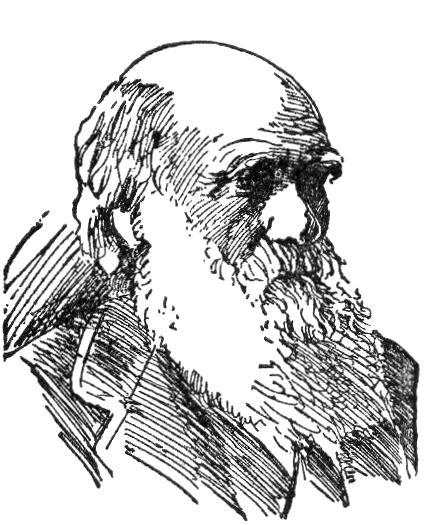 File:NSRW Charles Robert Darwin.png.