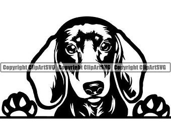 Dachshund clipart svg for free download and use images in.