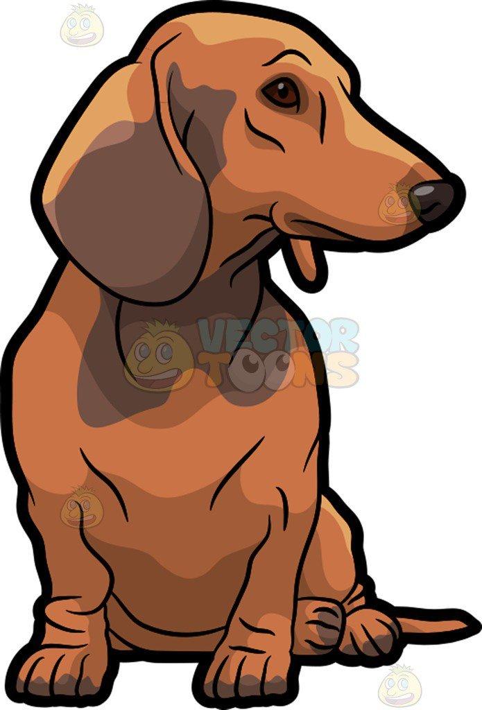 Cartoon dachshund clipart 3 » Clipart Portal.