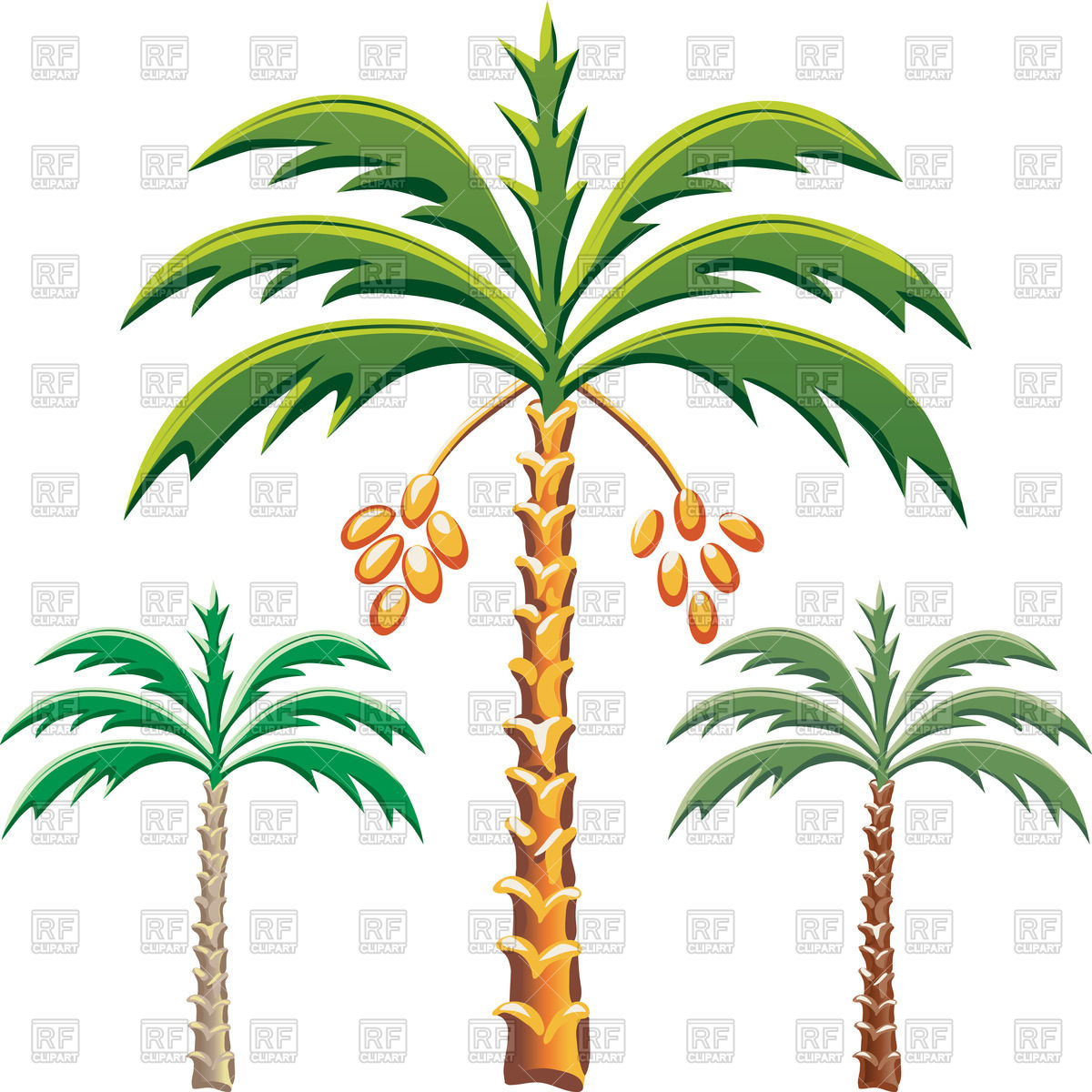 Date palm trees Stock Vector Image.