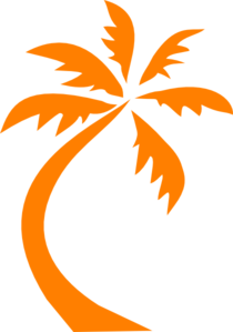 1000+ images about Palm Trees on Pinterest.