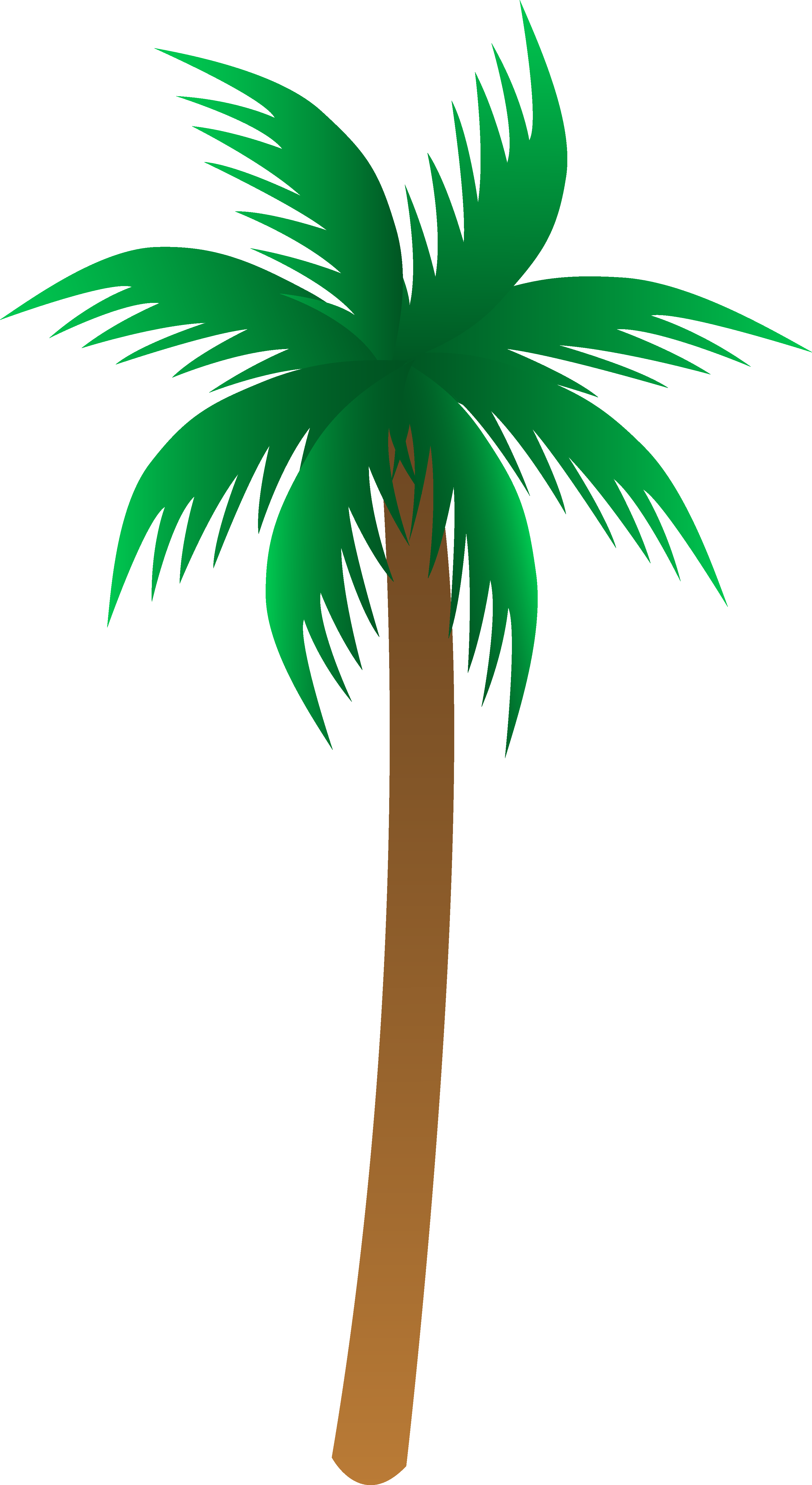 Palm tree clipart #8