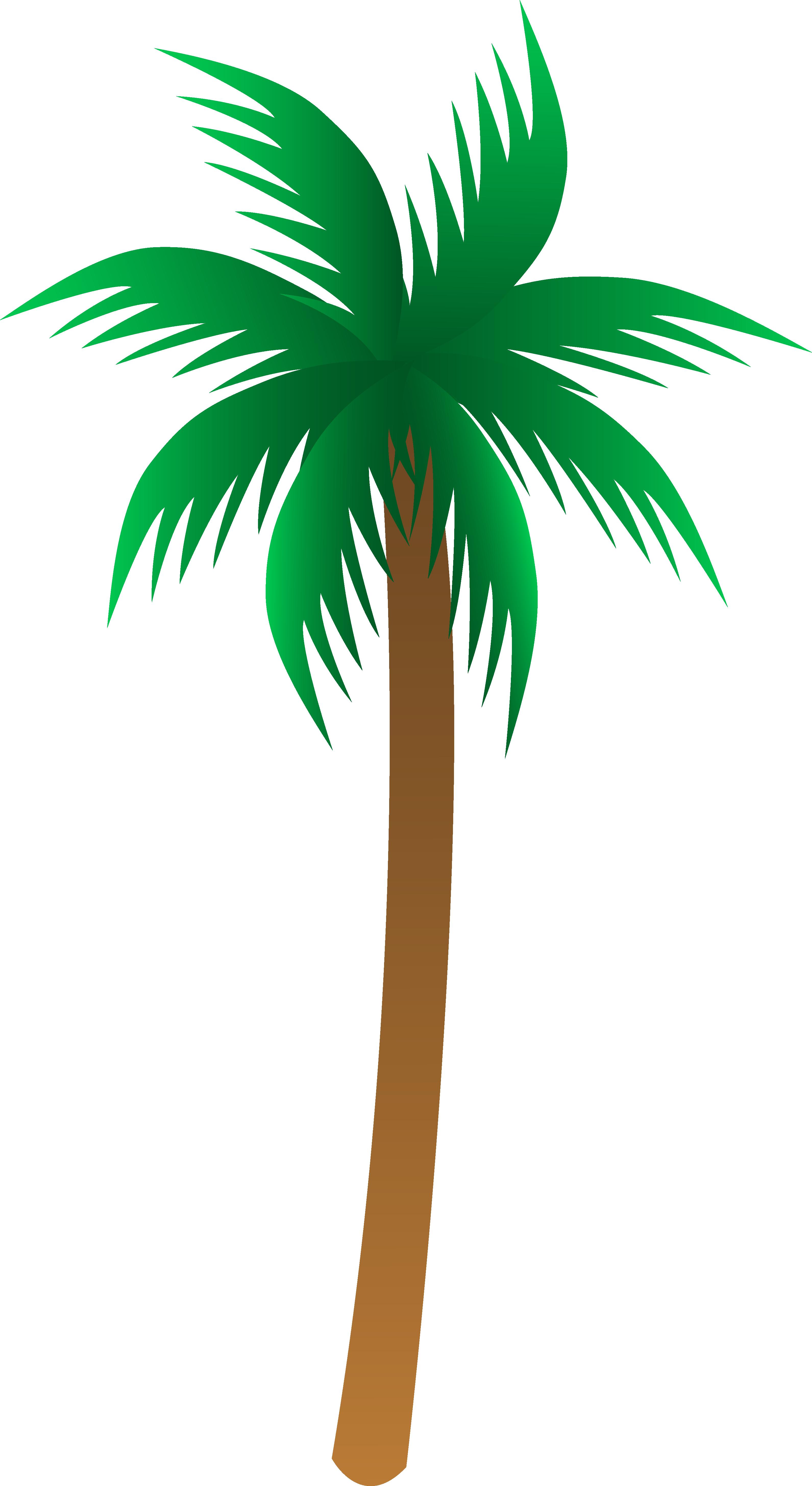 Palm plant clipart #14