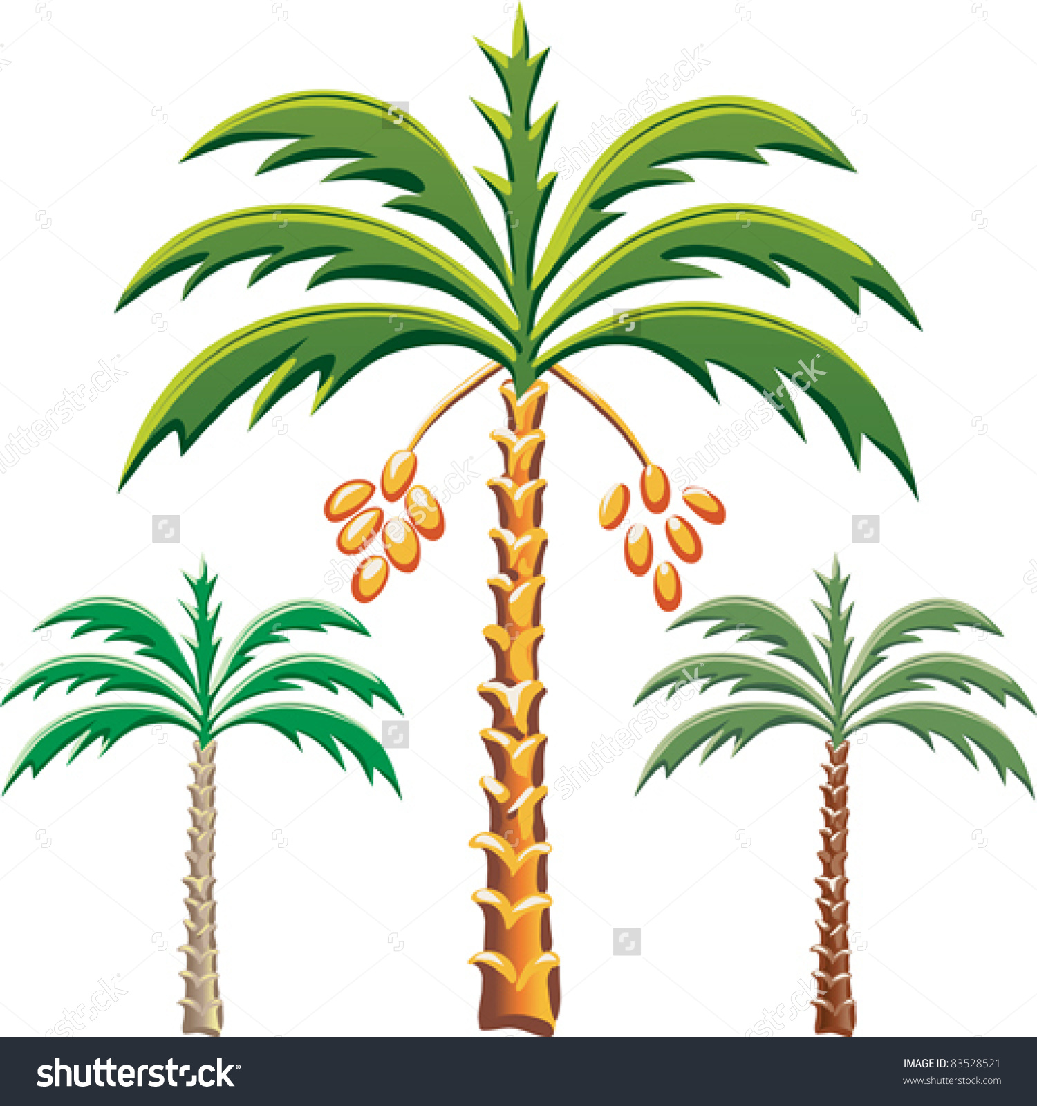 Vector Set Date Palm Trees Various Stock Vector 83528521.