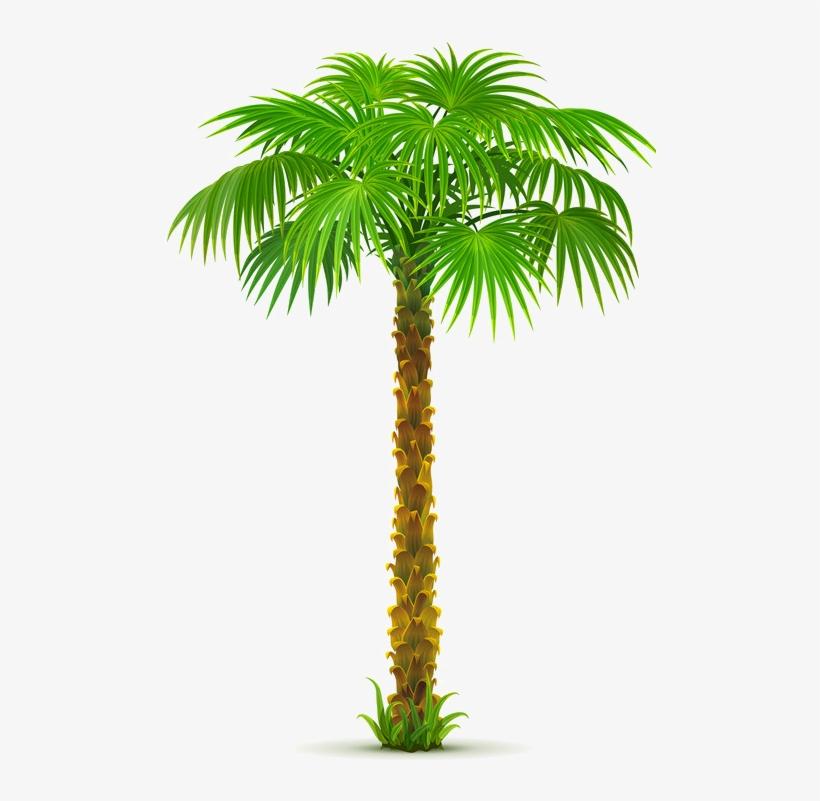 8963e73a Palm Tree Png, Paper Palm Tree,.