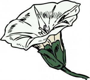 Weed Clip Art Download.