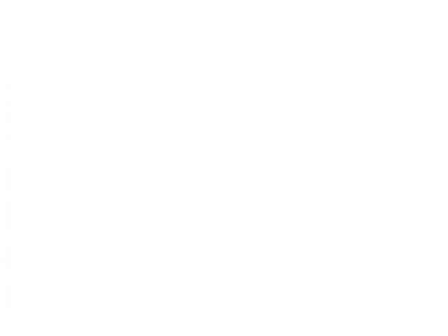 Duaghters Of American Revolution Logo Vector 2.