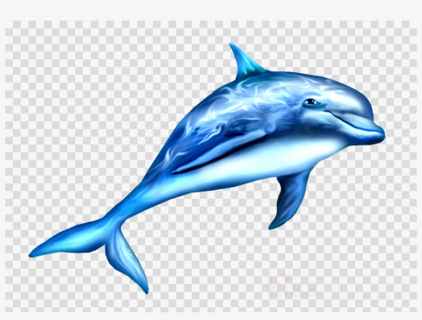 Dauphin Png Clipart Dolphin Clip Art.