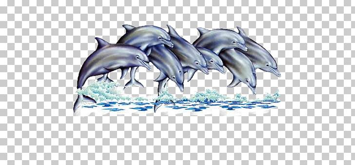 Dolphin Dauphin Of France Animal PNG, Clipart, Animal, Animals.