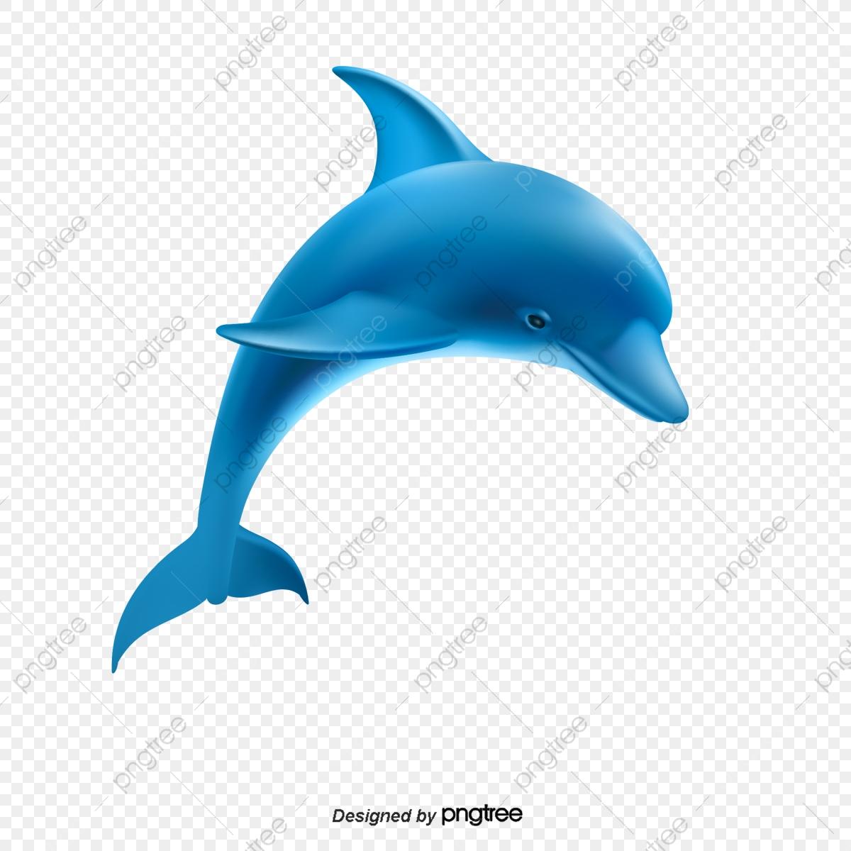 Cartoon Dolphin, Cartoon, Dolphin, Fish PNG Transparent Clipart.