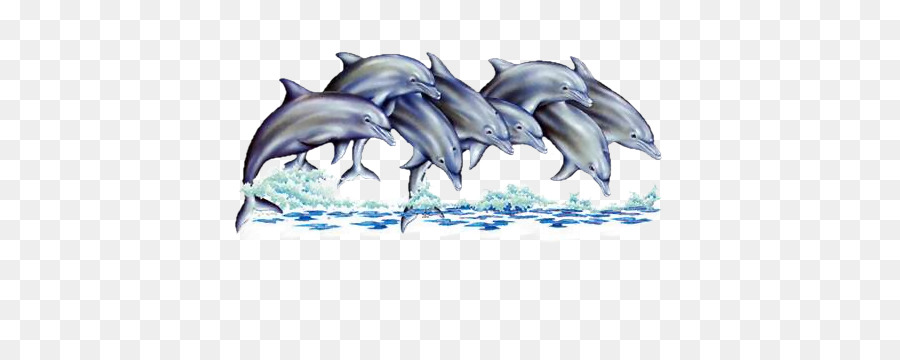 Dolphin Cartoon png download.
