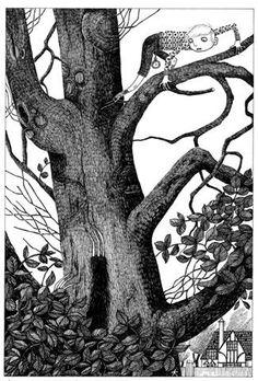 Image result for David Roberts (illustrator).