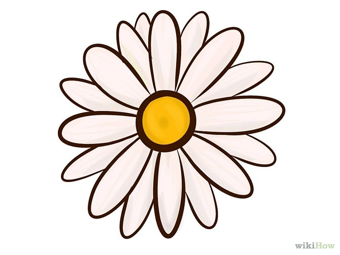 Free How To Draw A Dead Flower, Download Free Clip Art, Free Clip.