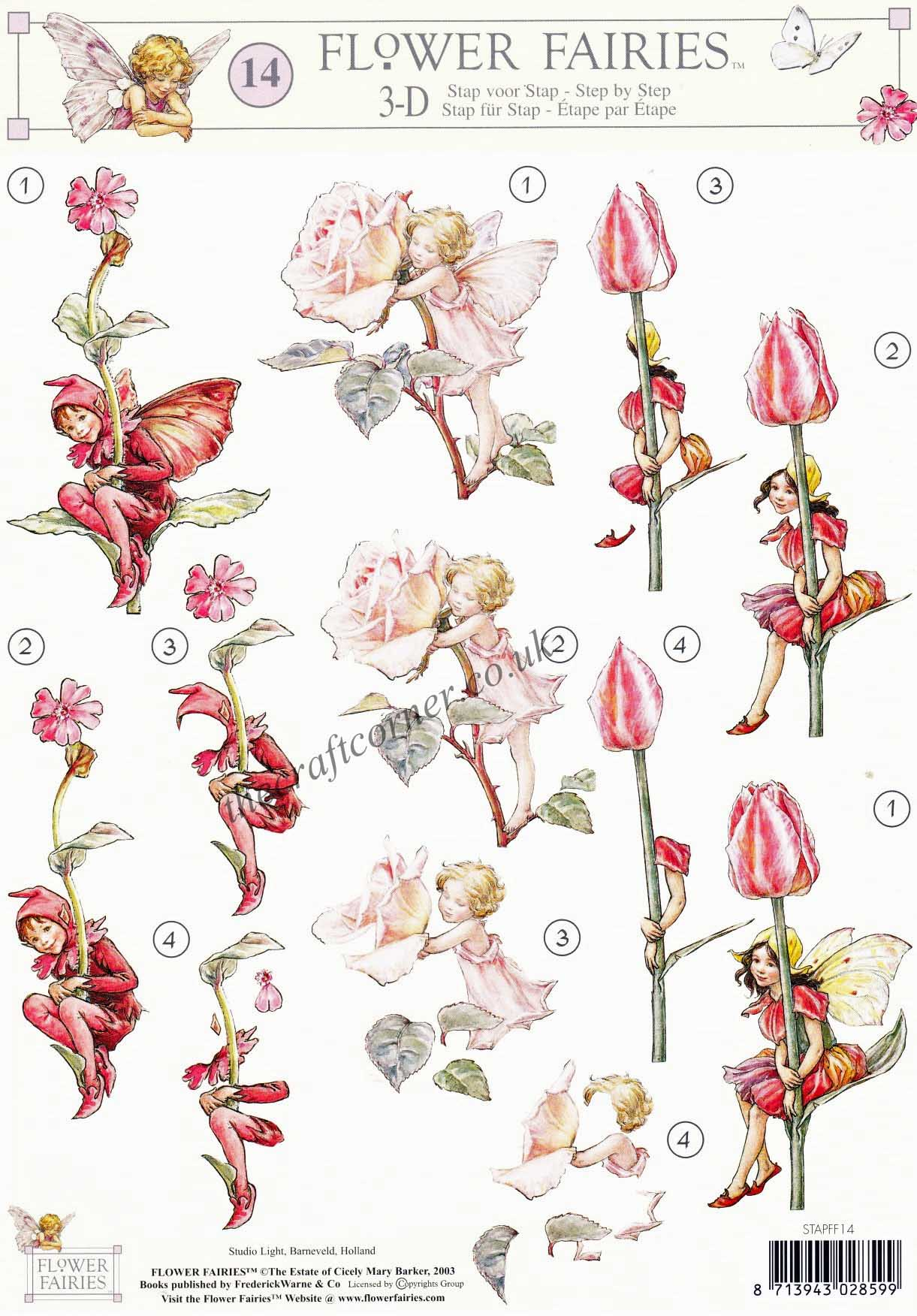 Flower Fairy 14 Tulip Rose & Red Campion Flower Fairies by Cicely.