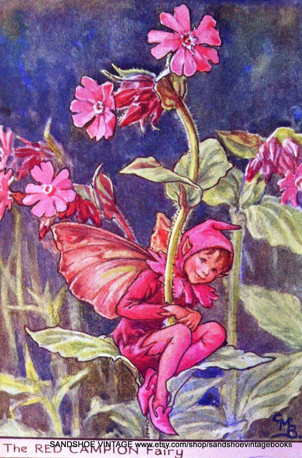 1930s RED CAMPION FAIRY Cicely Mary Barker by sandshoevintageprint.