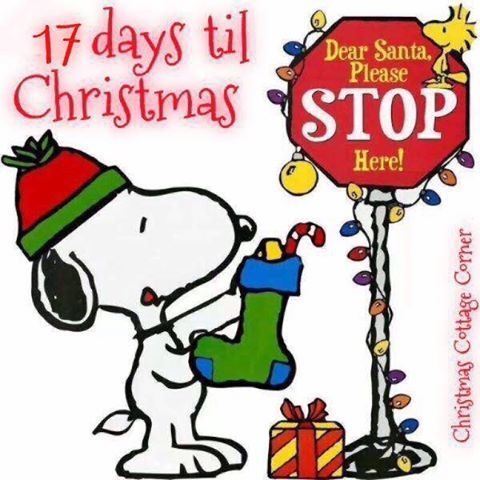 17 Days Until Christmas Pictures, Photos, and Images for.