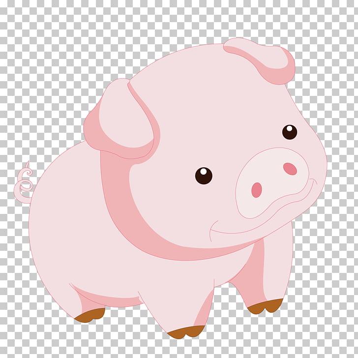 Domestic pig , Daze of piggy PNG clipart.