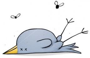 Dead Animal Cartoon Clipart.