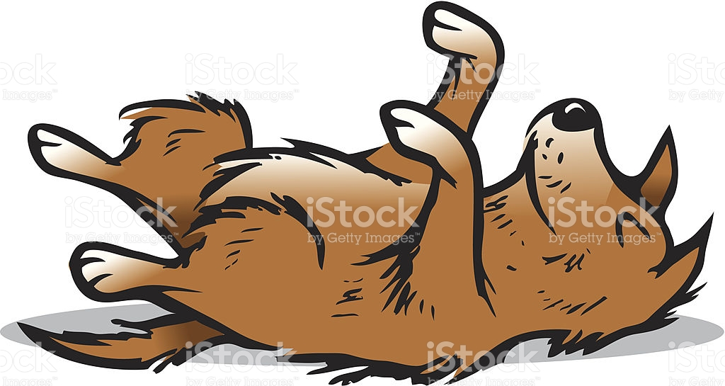 Dog Playing Dead stock vector art 164398478.