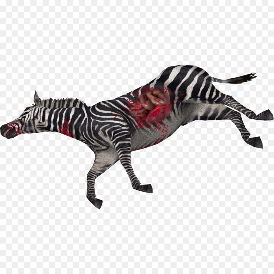 Zebra Cartoon png download.