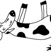 Dead Cow Clipart Images.