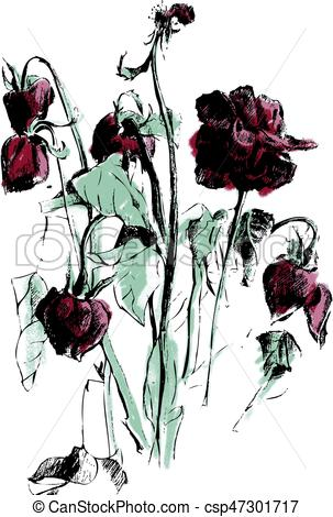 A drawing of dried roses.