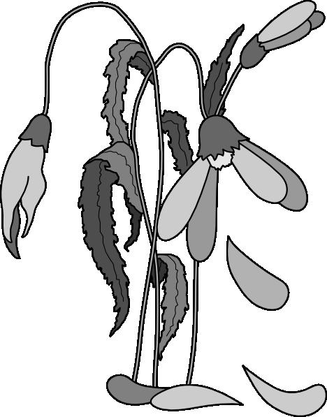 Dead Flower Clipart.