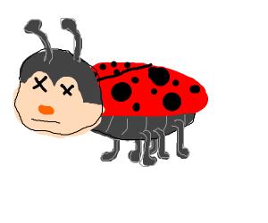 Underground Ladybug.