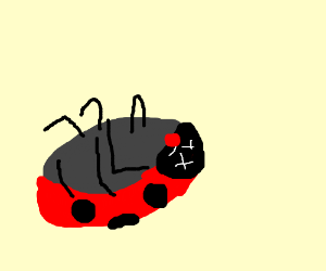 Ladybugs clipart dead Transparent pictures on F.