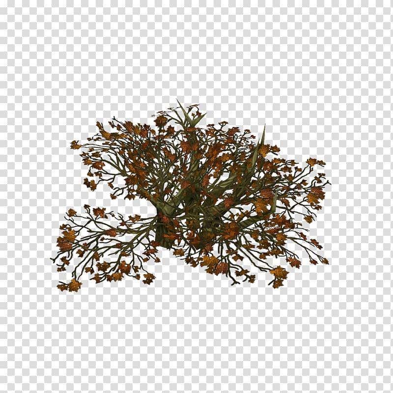 Prototype Twig Low poly Tree New Game Plus, dead plant.