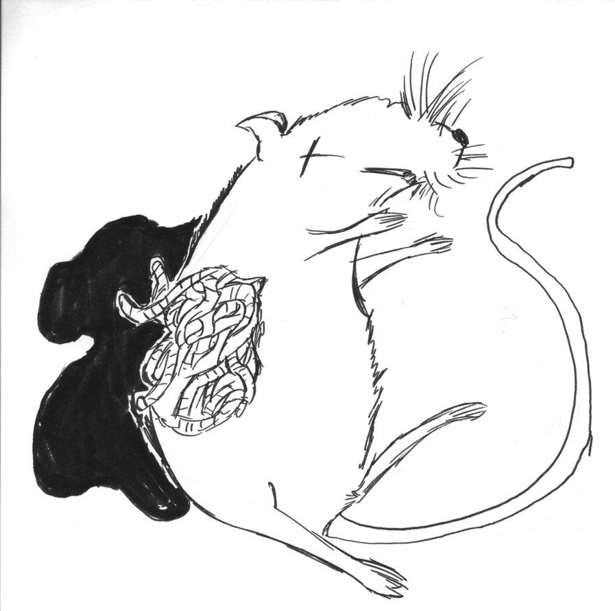 Dead Rat Clipart Black And White.