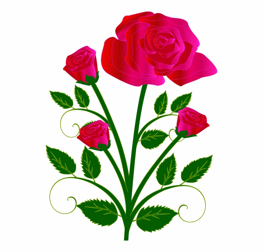 Image Library Clip Art Roses With Thorns And Dead.